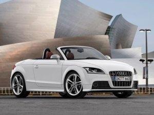 2009 Audi TTS  Pics